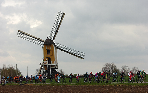 Amstel2012 Feltet