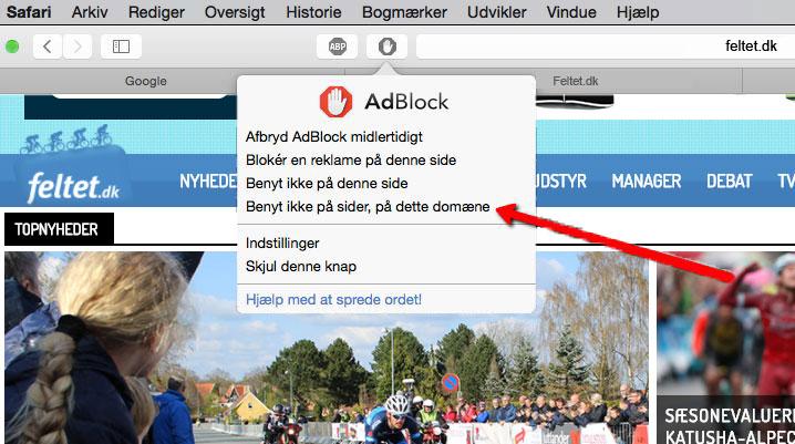 Adblock Safari1