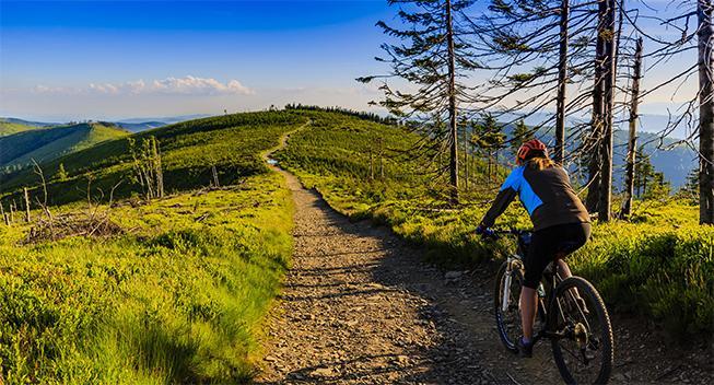 Sidste chance - slå til nu: Cykelferie i Harzen