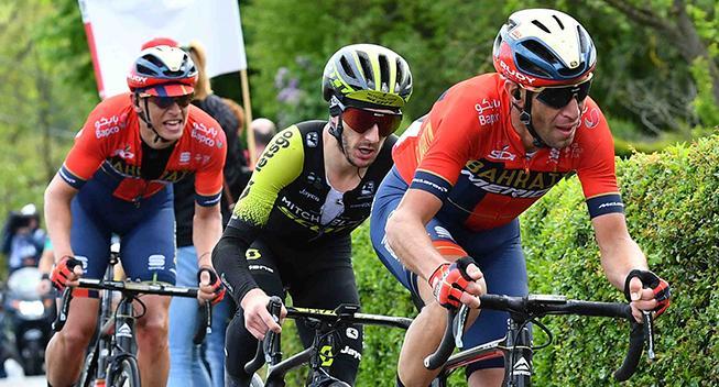 Irriteret Nibali: Alle arbejdede på nær Roglic