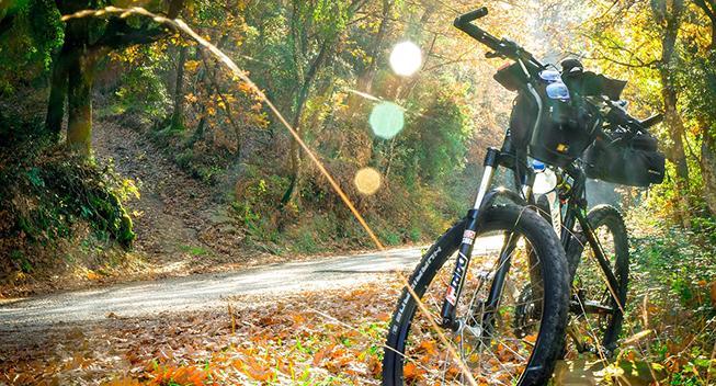 Kombiner cykel- og bilferie i USA